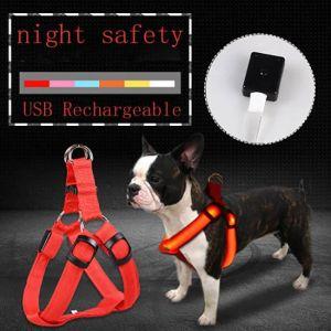Arnés led para perros con carga antipérdida por USB que mantiene a las mascotas seguras