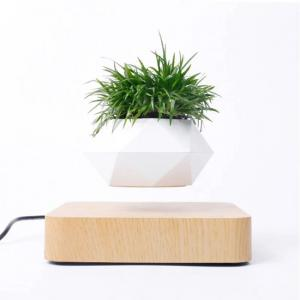 Maceta flotante magnética para planta Bonsai