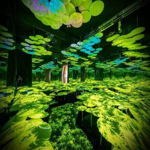 sistema inmersivo para espacios interiores con múltiples efectos